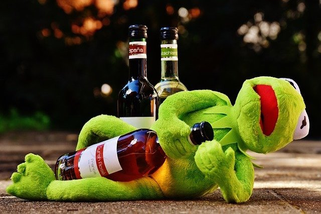 Kermit the Frog laying down with a wine bottle